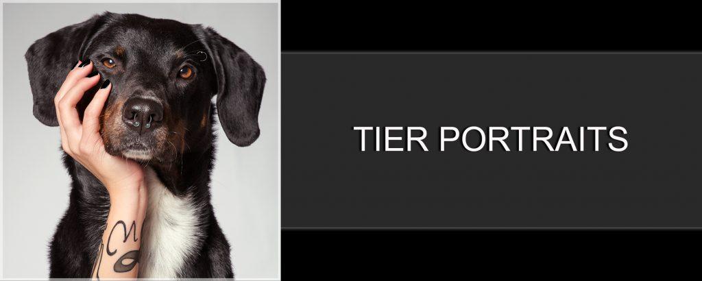Tier Portraits