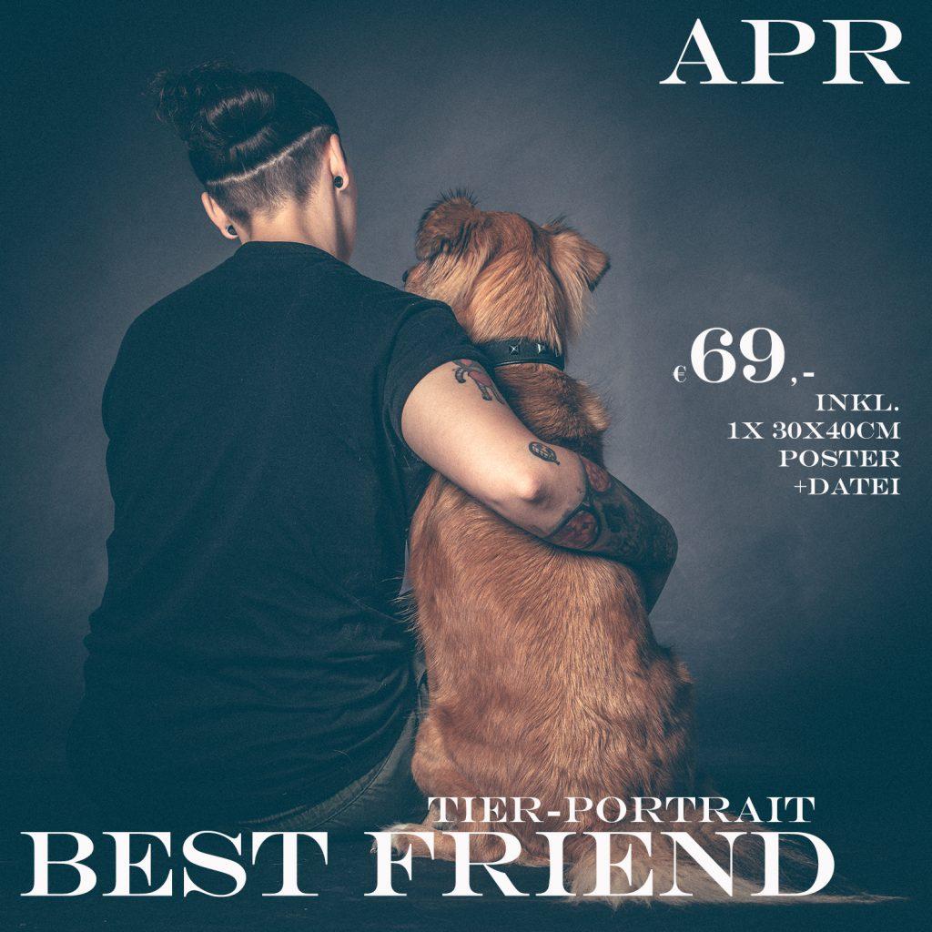 Tierportrait Aktion im April im Studio157, Thomas Ahrendt, Dein Haustier und du zum Aktionspreis von nur 69,-€